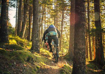 Mountain Biking Laois
